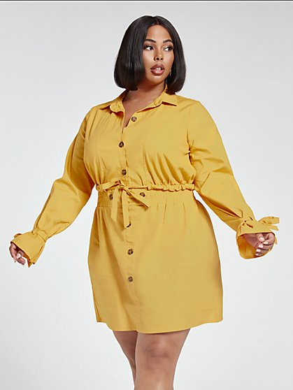 Plus Size Taylor Button Front Poplin Dress - Fashion To Figure